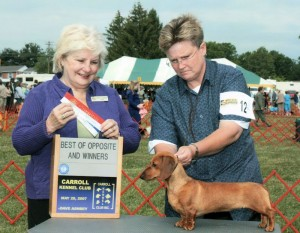 Knight's Clearly Canadian MS. AKC Champion in 2010