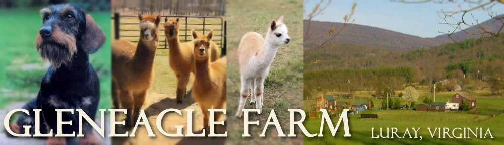 GlenEagle Farm